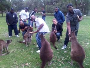 N7 & Kangaroos